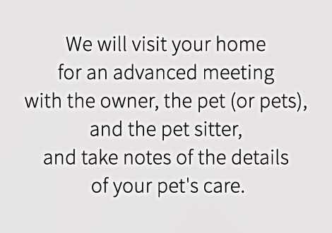 We will visit your home for an advanced meeting with the owner, the pet (or pets), and the pet sitter, and take notes of the details of your pet's care.