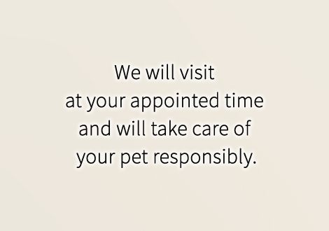 We will visit at your appointed time and will take care of your pet responsibly.